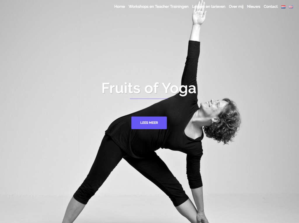 WebMagix portfolio Fruits of Yoga